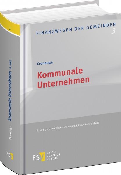 Kommunale Unternehmen 3D